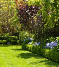 Brentwood Landscaping
